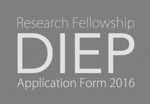 DIEP grey V2 Research Appl Frm